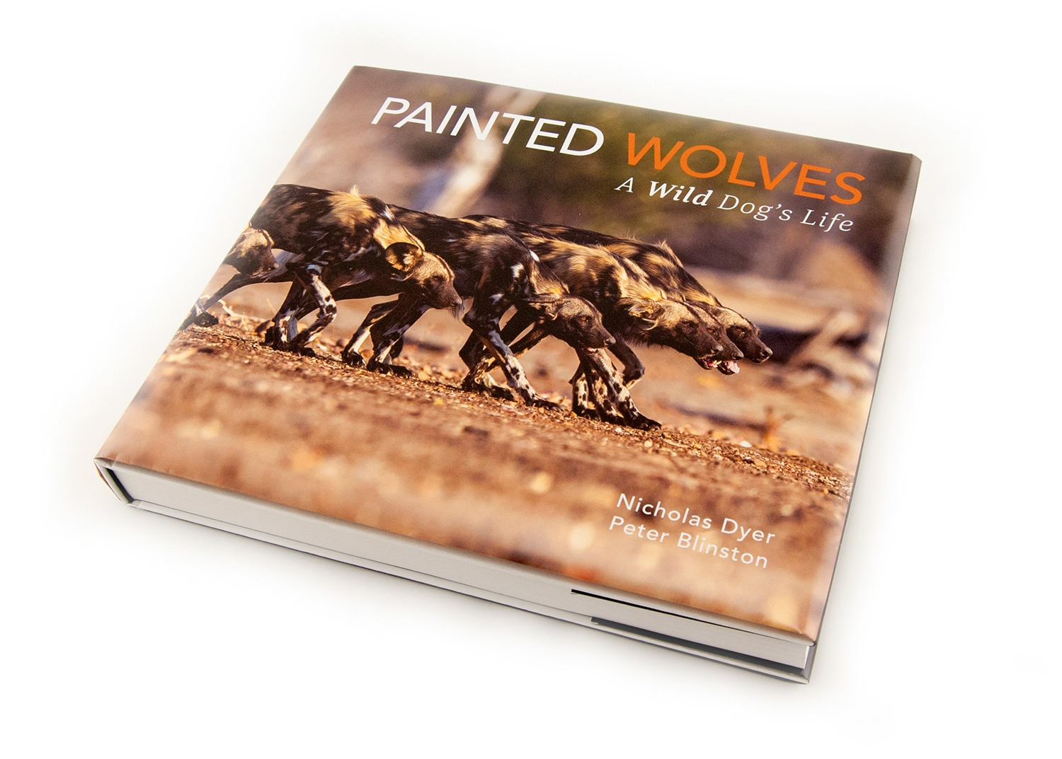 Launch of Painted Wolves: A Wild Dog's Life in the Netherlands