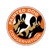 September 2020 update from Painted Dog Conservation
