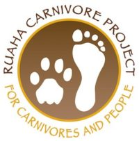 Latest news from the Ruaha Carnivore Project